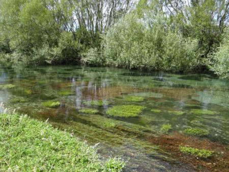 Spring creek, Harihari