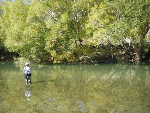 Mataura River II